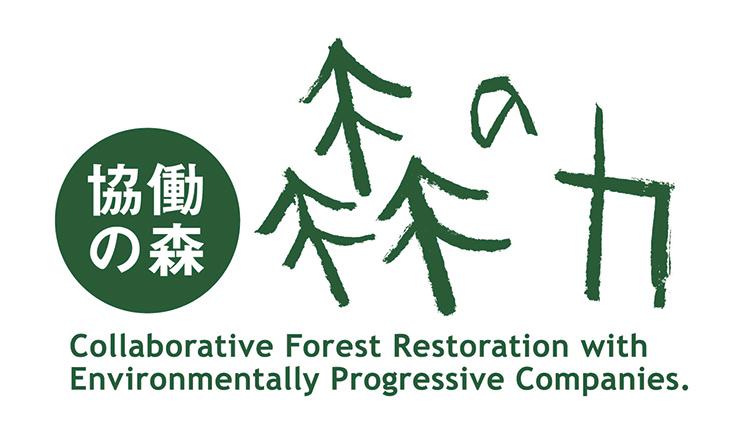協労の森 森の力